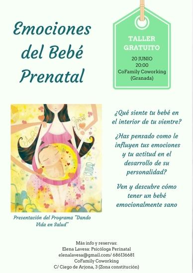 Emociones del bebé prenatal (1)